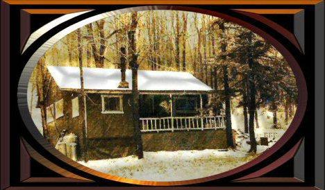 Mark's cabin 1973